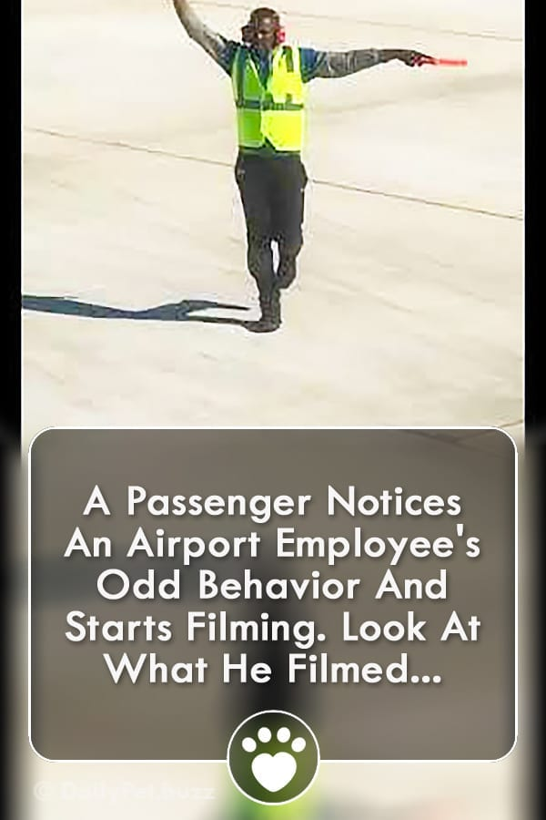 A Passenger Notices An Airport Employee\'s Odd Behavior And Starts Filming. Look At What He Filmed...