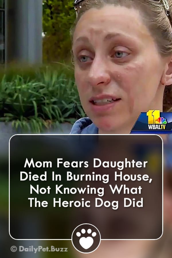 Mom Fears Daughter Died In Burning House, Not Knowing What The Heroic Dog Did