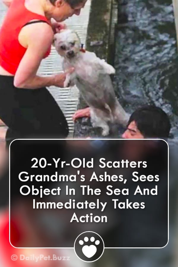20-Yr-Old Scatters Grandma\'s Ashes, Sees Object In The Sea And Immediately Takes Action