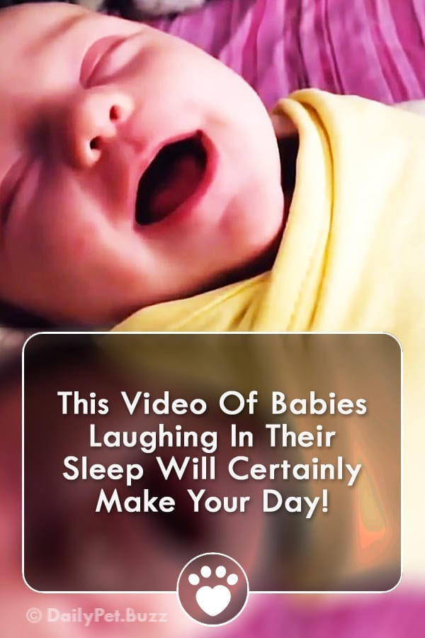 This Video Of Babies Laughing In Their Sleep Will Certainly Make Your Day!