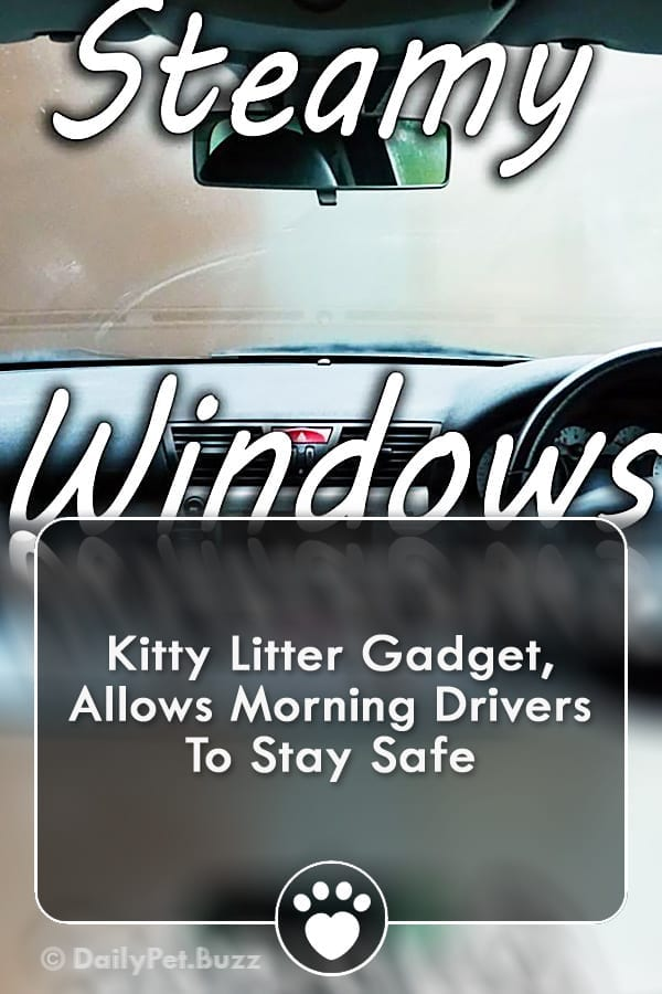 Kitty Litter Gadget, Allows Morning Drivers To Stay Safe