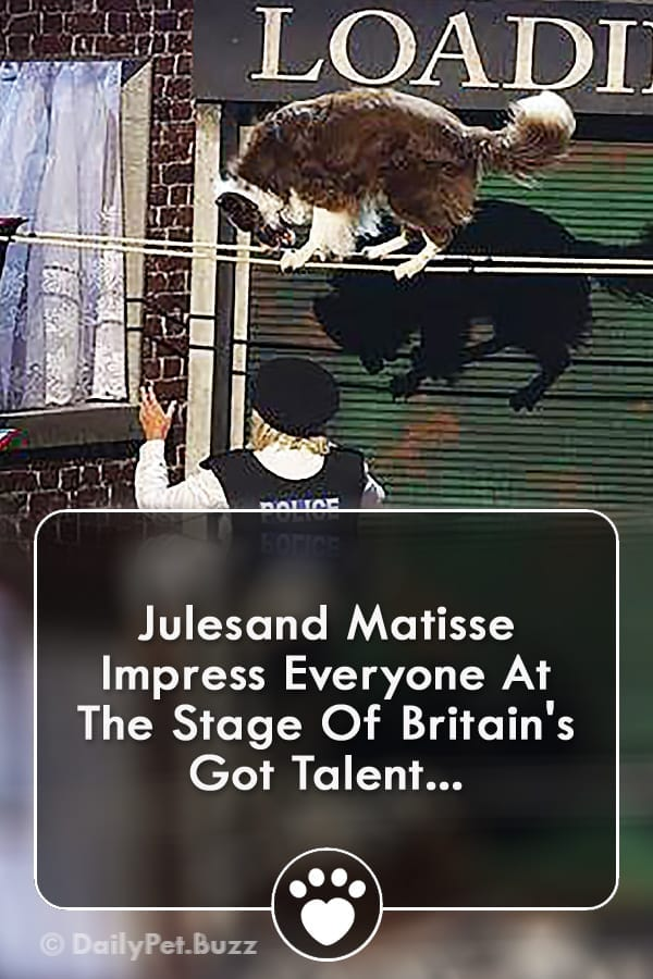 Julesand Matisse Impress Everyone At The Stage Of Britain\'s Got Talent...