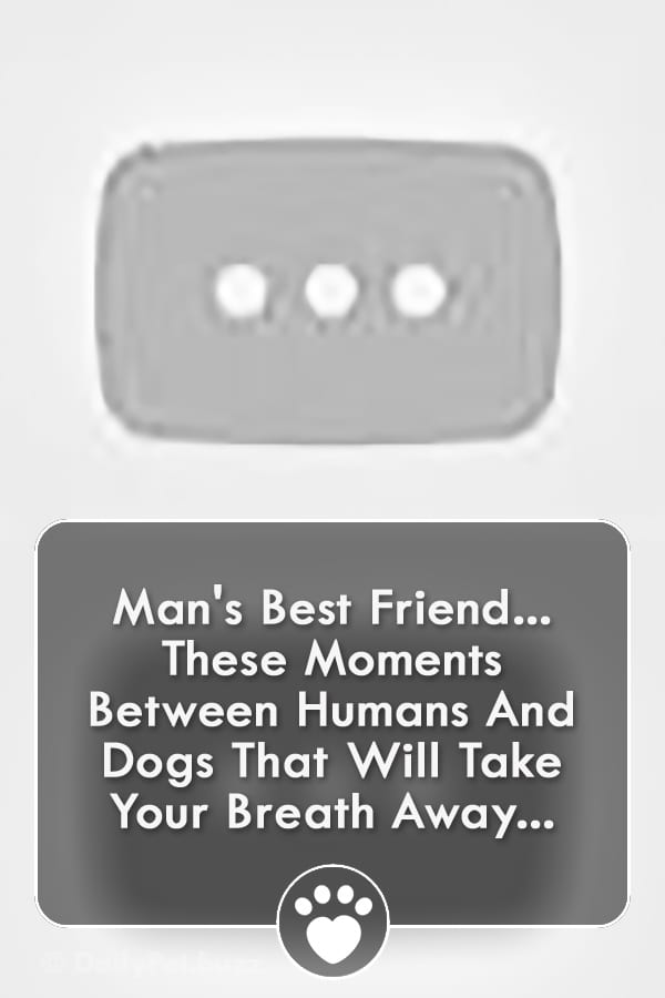 Man\'s Best Friend... These Moments Between Humans And Dogs That Will Take Your Breath Away...