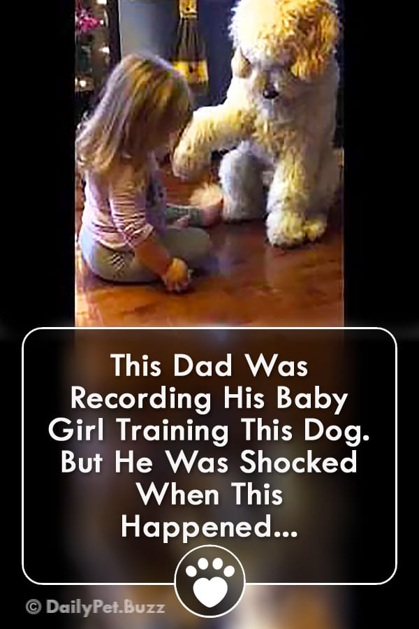 This Dad Was Recording His Baby Girl Training This Dog. But He Was Shocked When This Happened...