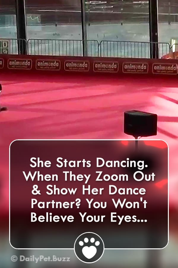 She Starts Dancing. When They Zoom Out & Show Her Dance Partner? You Won\'t Believe Your Eyes...
