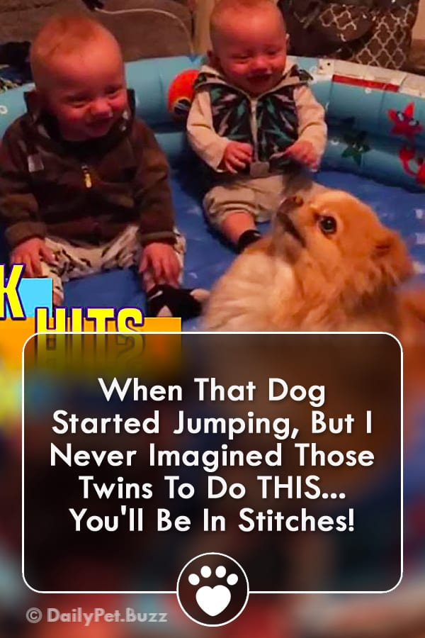 When That Dog Started Jumping, But I Never Imagined Those Twins To Do THIS... You\'ll Be In Stitches!