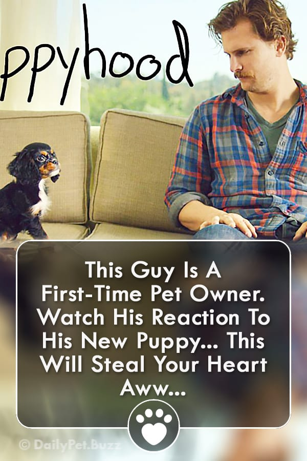 This Guy Is A First-Time Pet Owner. Watch His Reaction To His New Puppy... This Will Steal Your Heart Aww...