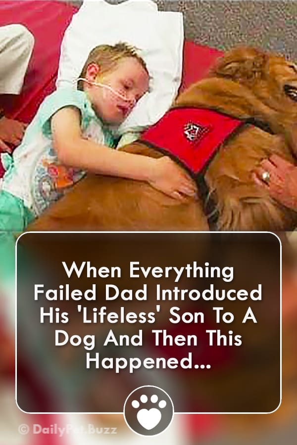 When Everything Failed Dad Introduced His \'Lifeless\' Son To A Dog And Then This Happened...