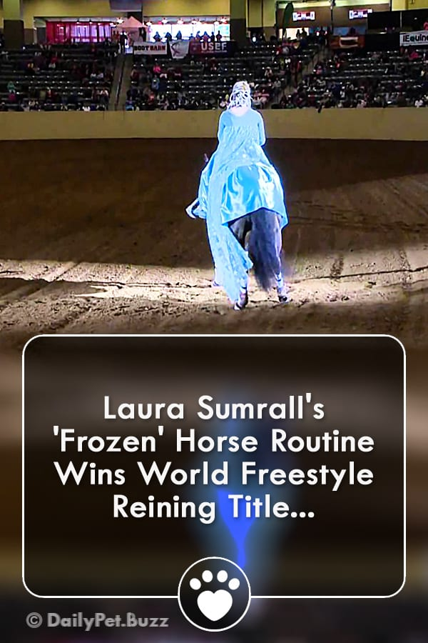 Laura Sumrall\'s \'Frozen\' Horse Routine Wins World Freestyle Reining Title...