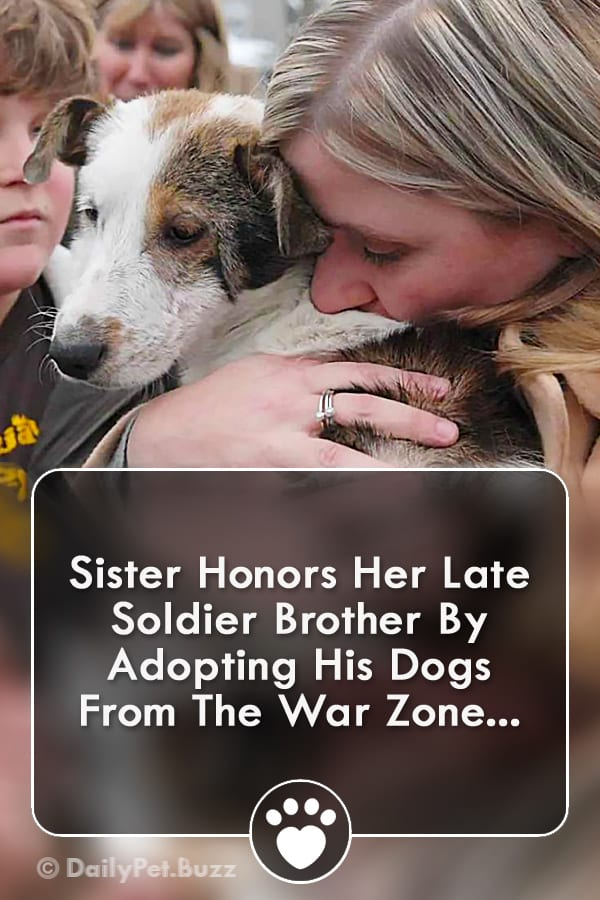 Sister Honors Her Late Soldier Brother By Adopting His Dogs From The War Zone...