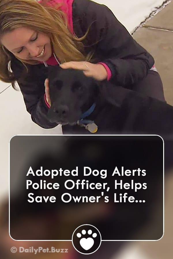 Adopted Dog Alerts Police Officer, Helps Save Owner\'s Life...