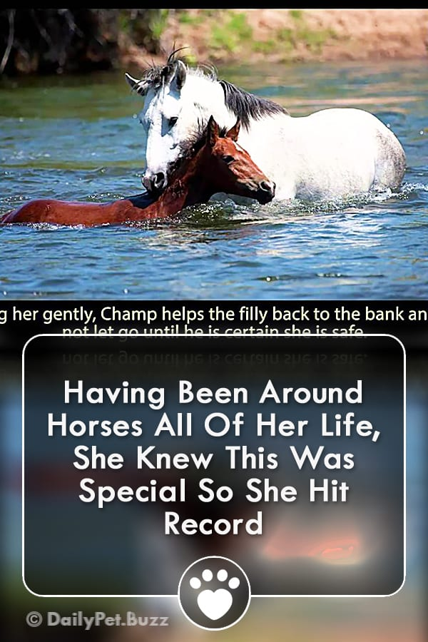 Having Been Around Horses All Of Her Life, She Knew This Was Special So She Hit Record