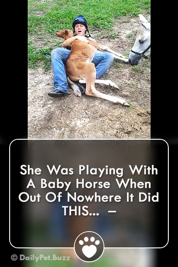 She Was Playing With A Baby Horse When Out Of Nowhere It Did THIS...  –