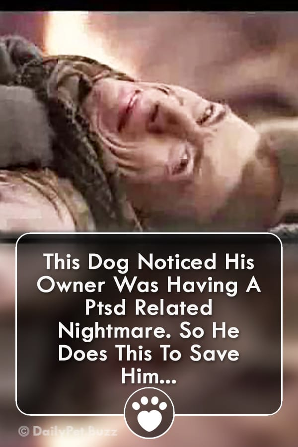 This Dog Noticed His Owner Was Having A Ptsd Related Nightmare. So He Does This To Save Him...